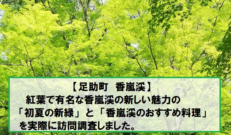 香嵐渓の新緑と料理